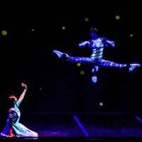 alicia-pais-maravillas-danza_07