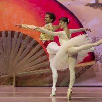 don-quijote-ballet-de-catalunya-02